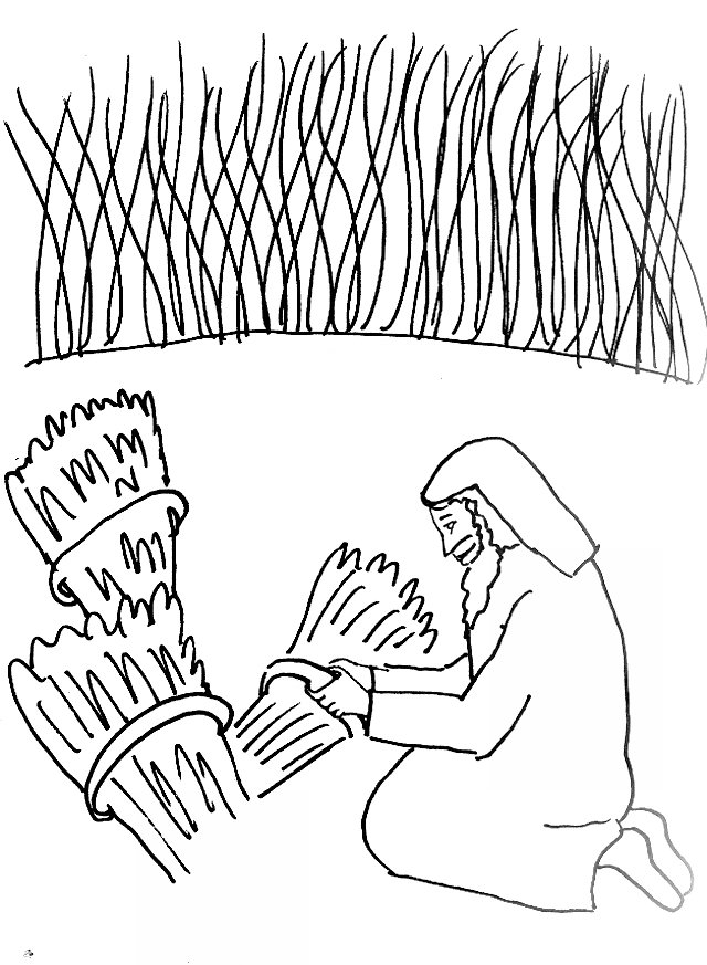 Bible Story Coloring Page for The Parable of the Wheat and